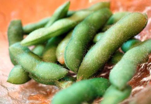 枝豆は太る?痩せるの?気になるカロリーとそのダイエット効果とは!