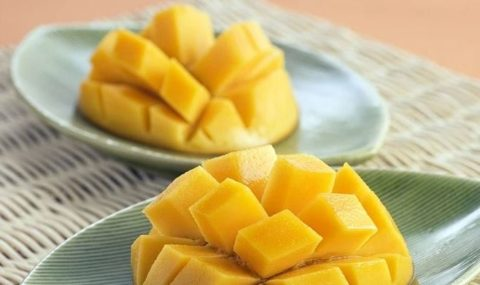 マンゴーは太る?太る原因と注意点をまとめてみた!