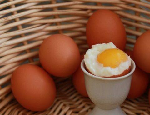 ゆで卵は太る?ダイエット効果とカロリーを調べて分かったこと!