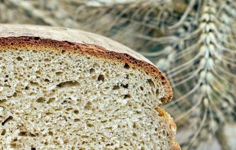 ブランパンは太る?痩せる?ダイエット効果と気になるカロリーまとめ